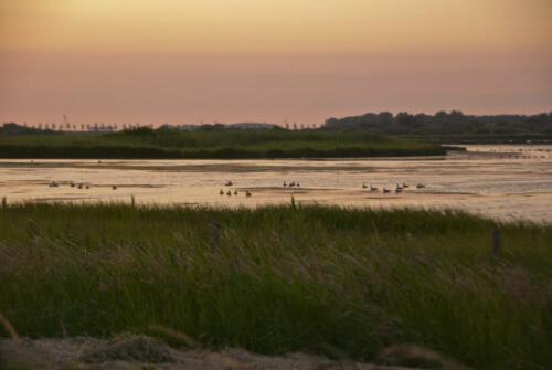 Wolphaardsdijk